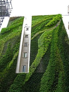 vertical garden down the side of the building. by patrick blanc