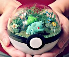Put your favorite Pokemon on display for all to see using these neat Pokeball terrariums. Each inch diameter Pokeball is handmade from plastic with a transparent top that allows you to see the miniature Pokemon in their natural habitat.