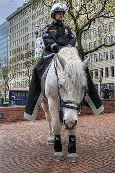 Portland Mounted Police - Portland, Oregon