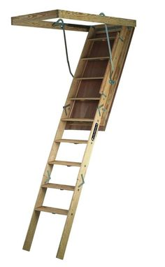 Example Of An Economy Ladder Only 89 Werner 9 7