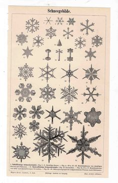 1894 snow flakes original antique winter weather print. $55.00, via Etsy.