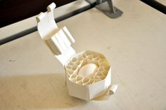 D'source Courses - Packaging Design - Assignment - Egg Packaging - 20