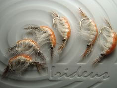 Irideus Big Sur Ghost Shrimp Steelhead Scud Czech Nymph Trout Fly Fishing Flies | eBay