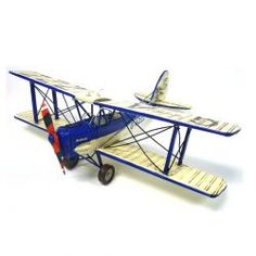Blue and White Tigermoth