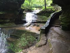 This Just Might Be The Most Beautiful Hike In All Of Ohio // It's arguably the most beautiful hiking trail in Ohio—and it will make you feel like you're temporarily living in a Lord of the Rings film. At approximately one mile in length, this gorgeous trail takes about an hour to complete, so it's perfect for a day hike you can take your time exploring.