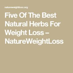 Five Of The Best Natural Herbs For Weight Loss – NatureWeightLoss