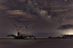 Driftwood and the Milky Way Space Images, Space Pics, Beautiful Space, Milky Way, New Image, High Quality Images, Driftwood, All About Time, Photoshop