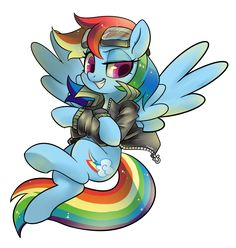 My Little Pony: Friendship is Magic: Image Gallery Mlp Characters, Fictional Characters, Mlp Pony, Pony Pony, My Little Pony Cartoon, My Little Pony Merchandise, Best Indoor Plants, My Little Pony Friendship, Rainbow Dash