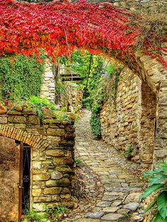 Medieval alleys of Bussana Vecchia in Liguria, Italy (by fede0253).