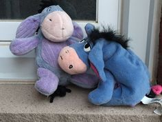 Eeyore meets Andrew for the first time... Long lost twins??