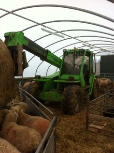Highland Polytunnels - 18 x 30 Sheep House, £2,034.00 (http://www.highlandpolytunnels.co.uk/18-x-30-sheep-house/)