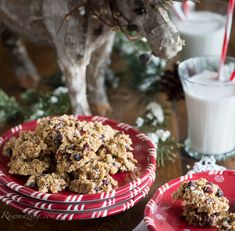 Raw Ginger Cranberry Orange Oatmeal Cookies