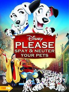 Unverschämt ehrliche Filmplakate  Filmplakate sollen einen filmischen Vorgeschmack liefern, ohne allzu viel vorwegzunehmen. Denn auf Spoiler können wir getrost verzichten, wenn wir ...