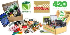 The Hot Box Battle: Comparison Review of Cannabox, Burn Box, and 420 Goody Box