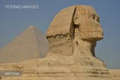 Yooniq images - Sphinx or Great Sphinx of Giza, lion with a human head, built in the 4th Egyptian dynasty around 2700 BC, in front of the Pyramid of Cheops, Giza, Egypt