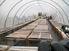 Table for greenhouse - Google Search
