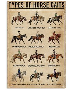 Horse Care Tips, Canvas Wall Art, Canvas Prints, Animal Tracks, Types Of Horses, Horse Silhouette, Horseshoe Art, All About Horses, Living Off The Land