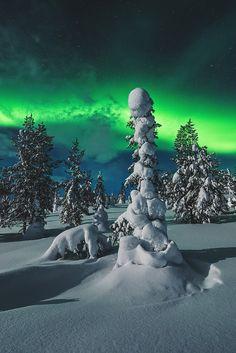 vividessentials:  Polar Night | vividessentials