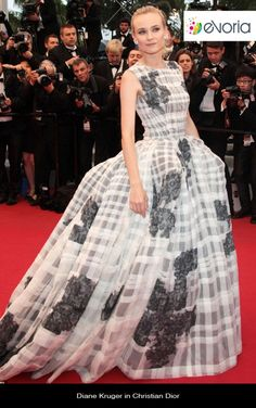 Diane Kruger in Christian Dior