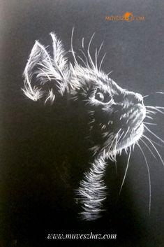Cuki állatok - Készíts Te is cuki állat rajzokat! Katt!! >> Happy Paintings, Manga, Black And White, Random, Cats, Animals, Pets, Pintura, Comic