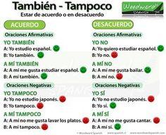 La diferencia entre También y Tampoco - The difference between También and Tampoco in Spanish
