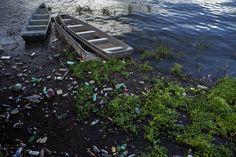A sociedade civil organizada da região de Altamira, apoiada por ambientalistas de todo o Brasil e lá de fora, não a queria. Lutou o quanto pôde contra sua construção. Foi acusada de tentar deter o desenvolvimento da Amazônia e do Brasil. Temia pelo Xingu, pelos índios, pelos ribeirinhos, por seus pescadores, pelas remoções que poderia implicar.