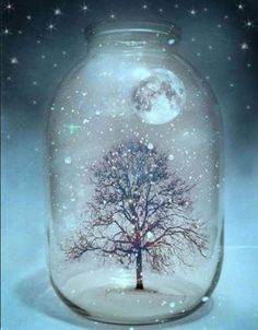 starry night, moon and tree in a jar so pretty Night Circus, Noel Christmas, Pics Art, Stars And Moon, Enchanted, The Dreamers, Snow Globes, Fantasy Art, Art Photography