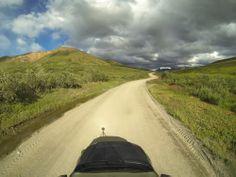 Beautiful views along Denali National Park - taken by #Colostate geologist Ron Karpilo