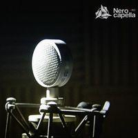 Студия Звукозаписи Nero сapella