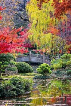 Gardening Autumn - Moon Bridge in the Japanese Gardens, Fort Worth Botanical Gardens, Texas - With the arrival of rains and falling temperatures autumn is a perfect opportunity to make new plantations Beautiful World, Beautiful Gardens, Beautiful Places, Beautiful Pictures, Beautiful Gorgeous, Beautiful Scenery, Amazing Gardens, Amazing Places, Simply Beautiful