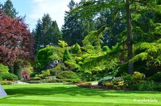 Road Trip Day The Beauty of Butchart Gardens - Ramblings from a Desert Garden Sunken Garden, Famous Gardens, Mediterranean Garden, Vancouver Island, Garden Design, Places To Go, Road Trip, Deserts, Tours