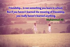 Friendship... is not something you learn in school. But if you haven't learned the meaning of friendship, you really haven't learned anything.   quotesofday.com