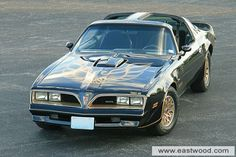 Bandit Trans-Am-Pontiac-Trans Am Special Edition-1977-Eastwood December 2012 Car Of The Month