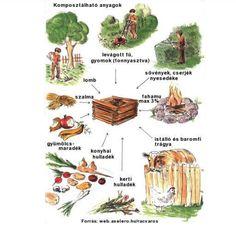 Cool Photos, Montessori, Gardening, Lawn And Garden, Horticulture