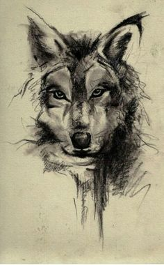Wolf sketch LOVE IT as a tattoo