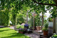 Minttua ja mustikoita -blogin takana häärii innokas hyötypuutarhuri, joka hurmaantuu kasvihuoneen lämmöstä, auringon kypsyttämistä tomaateista, rakastaa kevään vihreää ja rentoutuu työntämällä kädet multaan tai leipätaikinaan. Mieluiten eri aikaan.