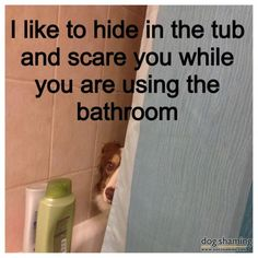 """I like to hide in the tub and scare you while you use the bathroom."""