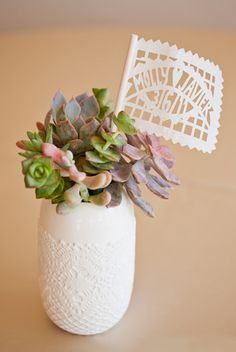 succulents for the party table