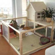 diy indoor rabbit cages - Google Search