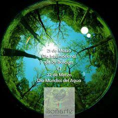 21 y 22 de Marzo Día Internacional de los Bosques y Día Mundial del Agua y tú...comenzaste a tomar conciencia? http://www.un.org/es/events/forestsday/ http://www.un.org/es/events/waterday/