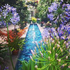 1000 Images About Botanical Gardens On Pinterest Botanical Gardens Washington Dc And Chapter 16