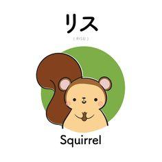 [211] リス |  risu | squirrel