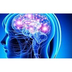 Quais os reagentes destinados a investigações na área das neurociências? Entre e descubra já 4 reagentes laboratoriais utilizados neste ramo da Ciência.
