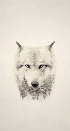 wolf, art, and animal image Wolf Sleeve, Wolf Tattoo Sleeve, Calf Tattoo, Sleeve Tattoos, Mens Tattoos, Jing Y Jang, White Wolf Tattoo, Wolf Hybrid, Arctic Wolf