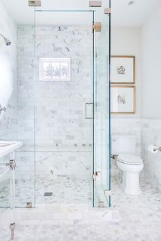 {shower design, tile and glass…except would like to go without hinges and door on shower : also marble around the toilet area and the toilet itself}