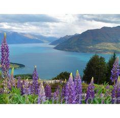 Queenstown - Just stunning New Zealand Adventure, New Zealand Travel, Around The World In 80 Days, Around The Worlds, The Beautiful Country, Beautiful Places, Nz South Island, Queenstown New Zealand, Adventures Abroad