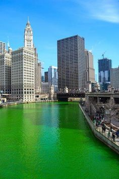 The Chicago River turned it's annual green to celebrate St. Patrick's Day! 2015
