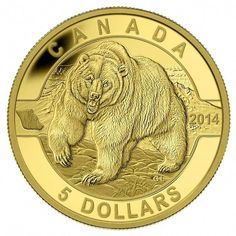 In the Royal Canadian Mint's O Canada series focusing on iconic Canadian images, this beautiful coin celebrates the enigmatic grizzly bear. Canadian Identity, Gold Bullion Bars, Canadian Wildlife, Canadian Coins, Coin Design, Gold Coins, Mint Coins, Gold Stock, Commemorative Coins