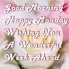 It's Monday morning again and the start of a new week. If you are looking for a good morning Monday quote to start your week off right then check out our 20 favorite cute quotes for Monday, Cute Good Morning Images, Good Morning Happy Monday, Good Morning Beautiful Quotes, Good Morning Texts, Good Morning Inspirational Quotes, Good Morning Picture, Good Morning Wishes, Monday Wishes, Monday Greetings