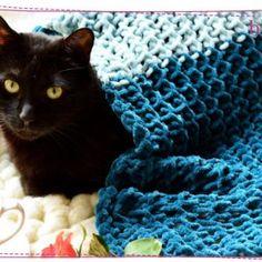 Jak zrobić czapkę na szydełku? Łatwa czapka dla początkujących ⋆ Pasart Blog Merino Wool Blanket, Aga, Crochet, Tulips, Ganchillo, Crocheting, Knits, Chrochet, Quilts